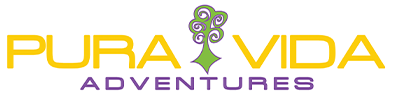 Pura Vida Home – Pure Vida | Adventures | Guides | Rock Climbing | White Water Rafting | Canyoneering | Mountain biking | Kayaking | Hiking | Repelling | Asheville | Brevard | North Carolina Logo