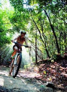 mountain biking guides pisgah